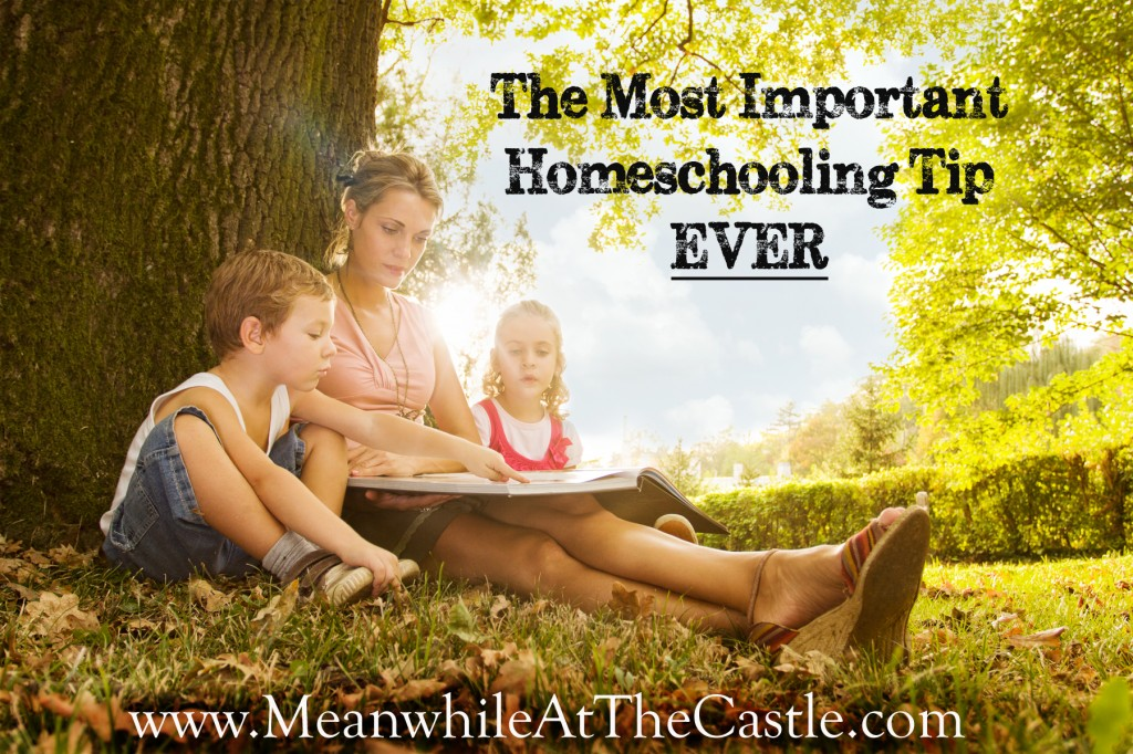 MostImportantHomeschoolingTipEver