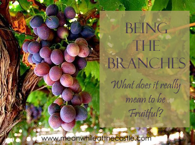 What does it mean to be fruitful?